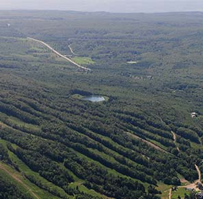 aerial view of Osler Bluff Ski Club in the summer showing the pond at the top of the hill