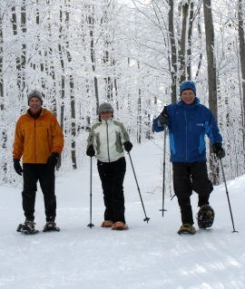 Three snowshoers on a snowy trail within the trees